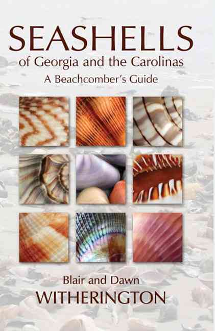 Seashells of Georgia and the Carolinas By Witherington, Blair/ Witherington, Dawn